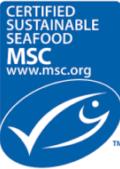 msc-logo-e1467053210230